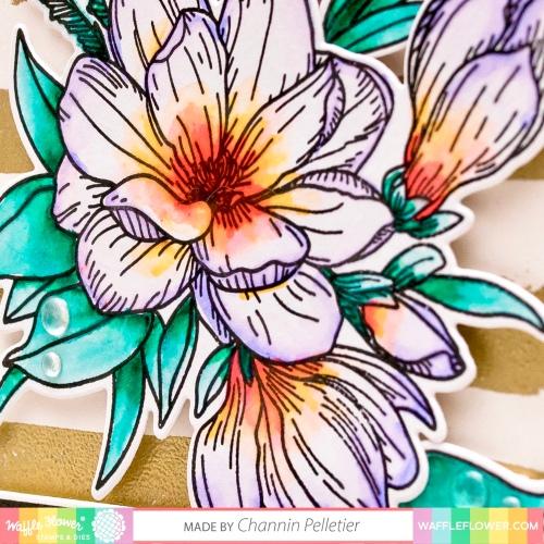 wfc-201901-271216 magnolia-channin 1b