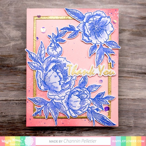 WFC201906-271247 Peony Notes-Channin 1A